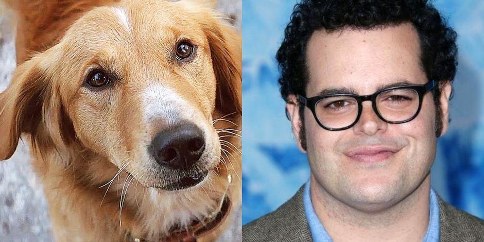 a-dogs-purpose-movie-josh-gad